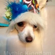 V newest Easter hat1